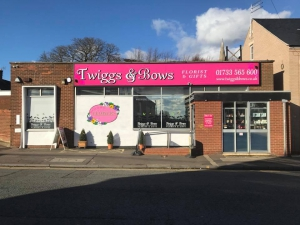 Twiggs & Bows