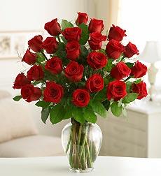 Two Dozen Roses In Vase