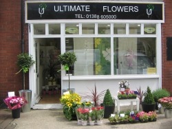 Ultimate Flowers LTD