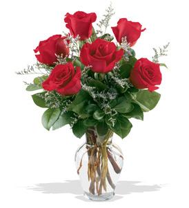 Vase Of  6 Roses