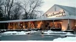 Verstandig's Florist Inc.