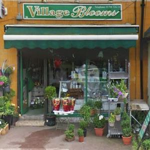 Village Blooms
