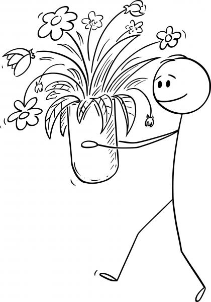 Walsall Florist