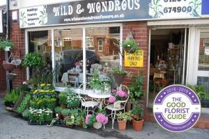 Wild and Wondrous Ltd