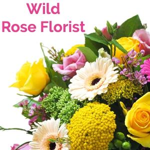 Wild Rose Shop (North Sydney)