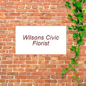 Wilsons Civic Florist - Newcastle