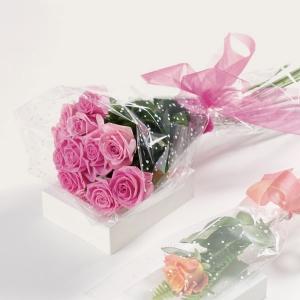 Wrapped Pink Roses V223