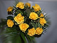 Yellow Roses Hand Tied