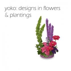 Yoko: Designs in Flowers and Plantings