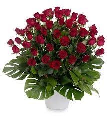Zena's Flowers